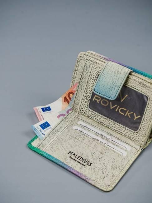 Portfel damski beżowy Rovicky R-N109-ART-09 BEIGE